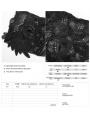 Black Gothic Lace Flower Gloves