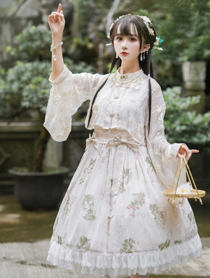 The Compendium Of Materia Medica Pattern Irovy Classic Lolita JSK Dress